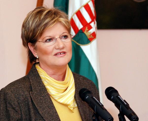 Szili Katalin: összefogás nélkül nincs jövője a magyarságnak