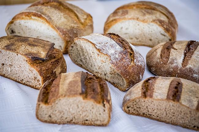 Minőségi kenyeret mindenkinek! - a tájfajta ősgabonák kiaknázatlan lehetőségeket rejtenek