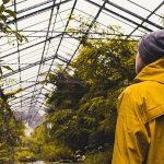 avallalatokfelismerikakornyezetvedelmimegoldasok 1