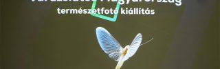Varázslatos Magyarország a Vajdahunyadvárban