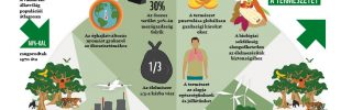 Élő Bolygó Jelentés: 8 milliárd ember jövője a tét