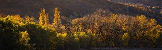 Visegrád ősszel is tökéletes turistacélpont