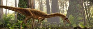 A Tyrannosaurus Rex egyik legkorábbi ősét fedezték fel Brazíliában