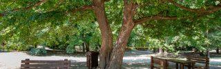 Turisztikai fejlesztések a Pilisi Parkerdő területén
