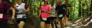 Jótékonysági futóverseny és családi nap a Budakeszi Vadasparkban